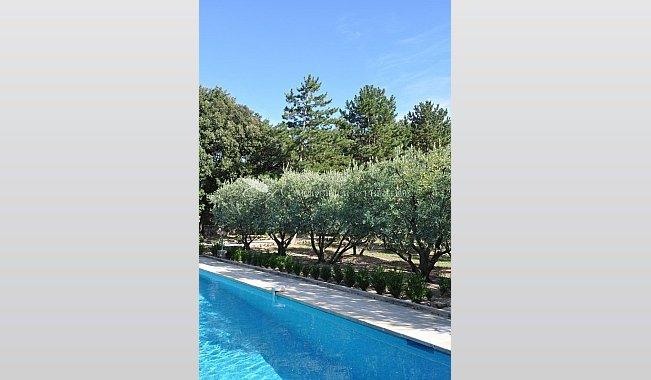 Immobilier prestige vaucluse avignon villa piscine for Piscine miroir vaucluse