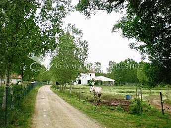 [G. Immobilier de Prestige] REAL STUD - EQUESTRIAN CENTER