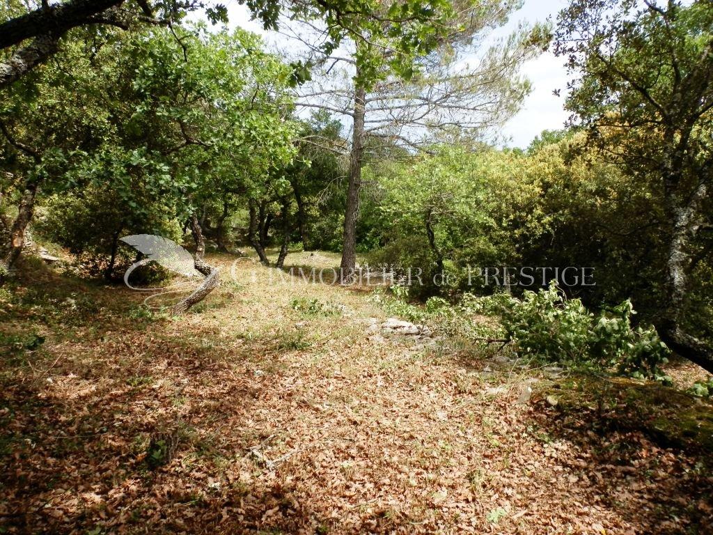 Immobilier prestige vaucluse site exceptionnel terrains for Immobilier site
