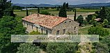 [G. Immobilier de Prestige] VAUCLUSE, MAZAN, MAS WITH SWIMMING POOL AND COTTAGE