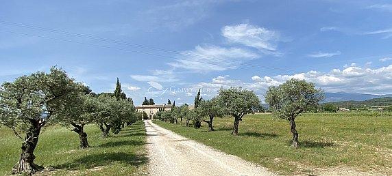 [G. Immobilier de Prestige] Une propriété exceptionnelle au milieu des vignes