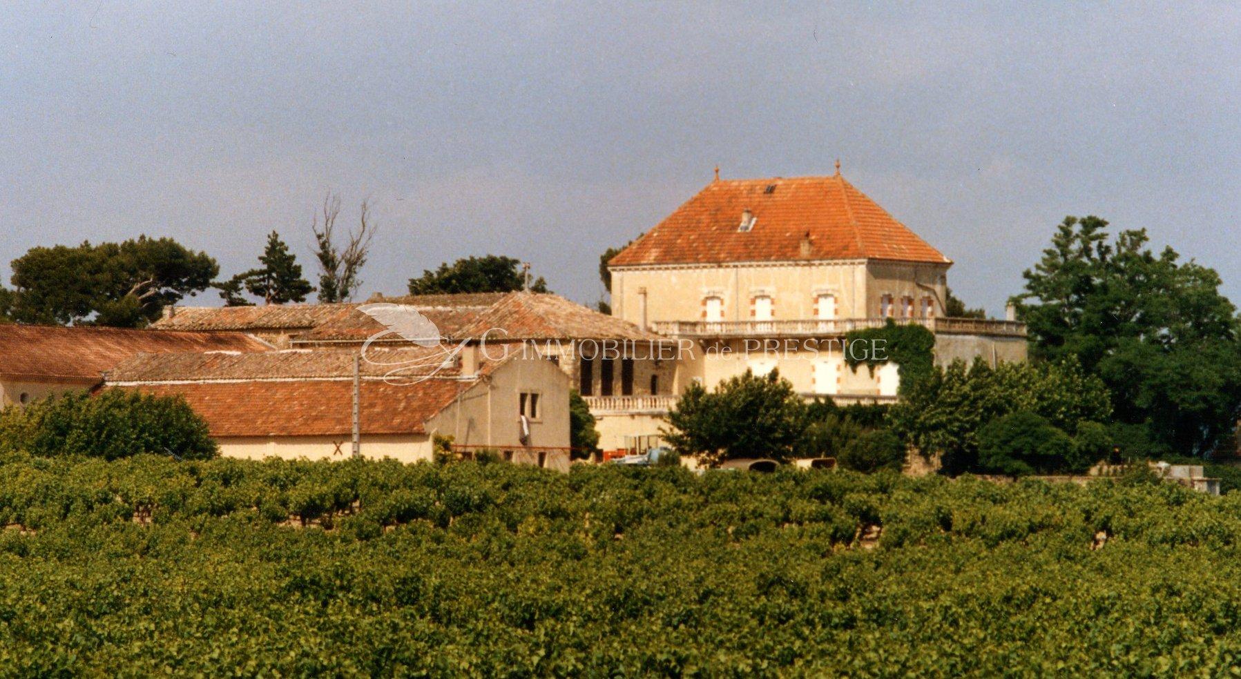 immobilier prestige vaucluse un domaine viticole sur 110 hectares ch teaux et vignobles. Black Bedroom Furniture Sets. Home Design Ideas